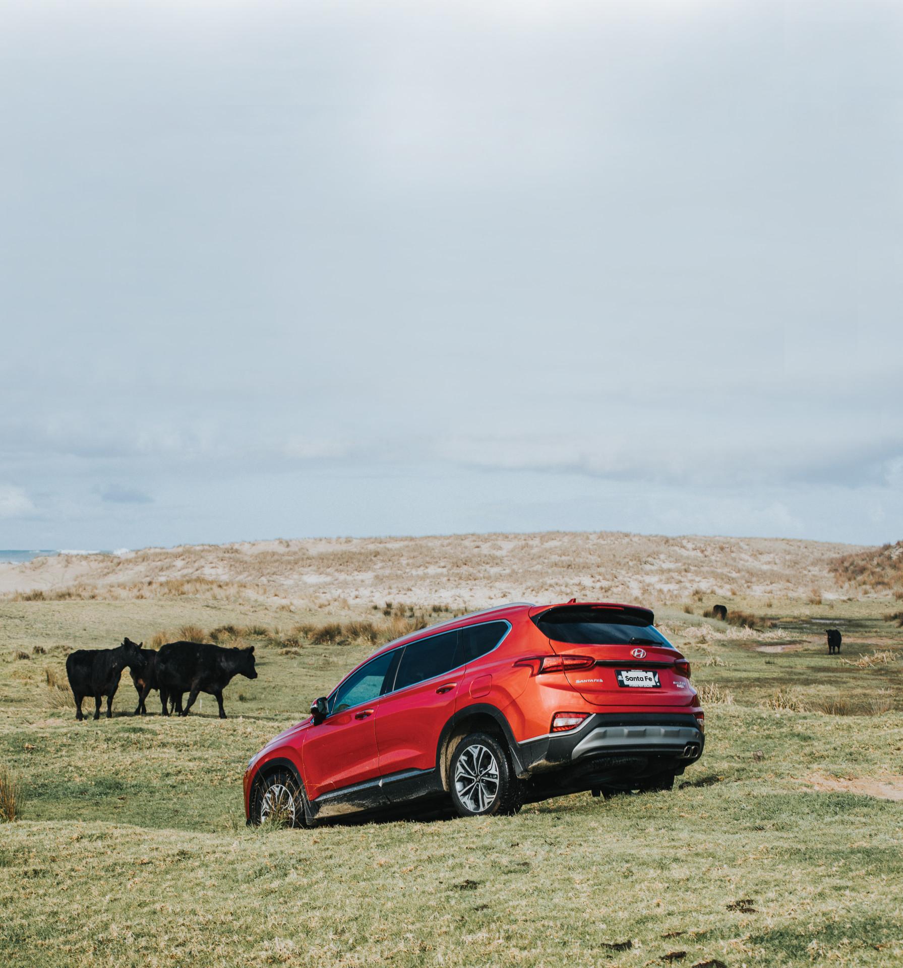Santa Fe Family 7 Seat SUV